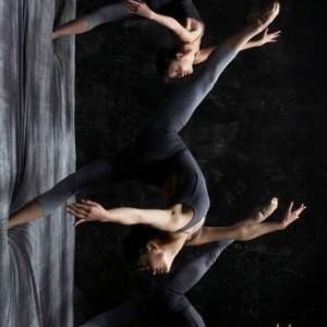 dansse-verticale1